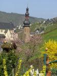 2009-04-10-Lente in Cochem