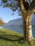 Camping Ringgenberg aan de Brienzer See