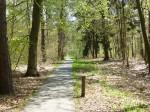 2013-5-11 Heerlijk door de bossen fietsen
