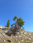 0152 Onze hoogste punt bij Renclusa